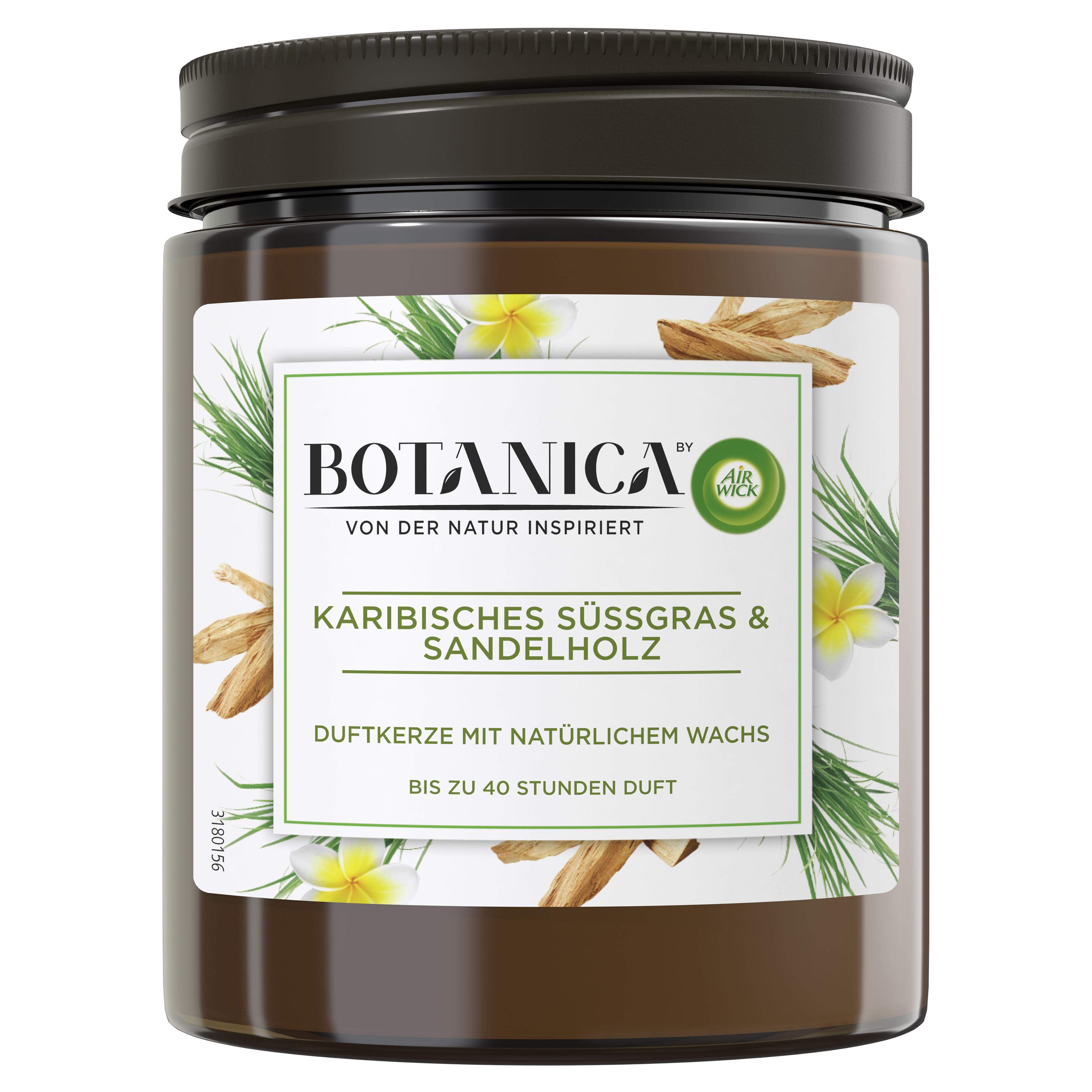 Air Wick Botanica Duftkerze Karibisches Süßgras & Sandelholz