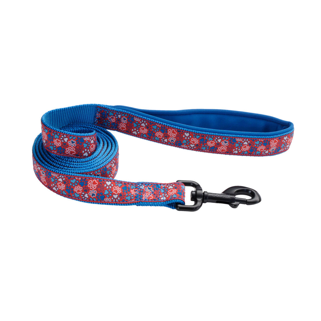 Ribbon Weave Leash