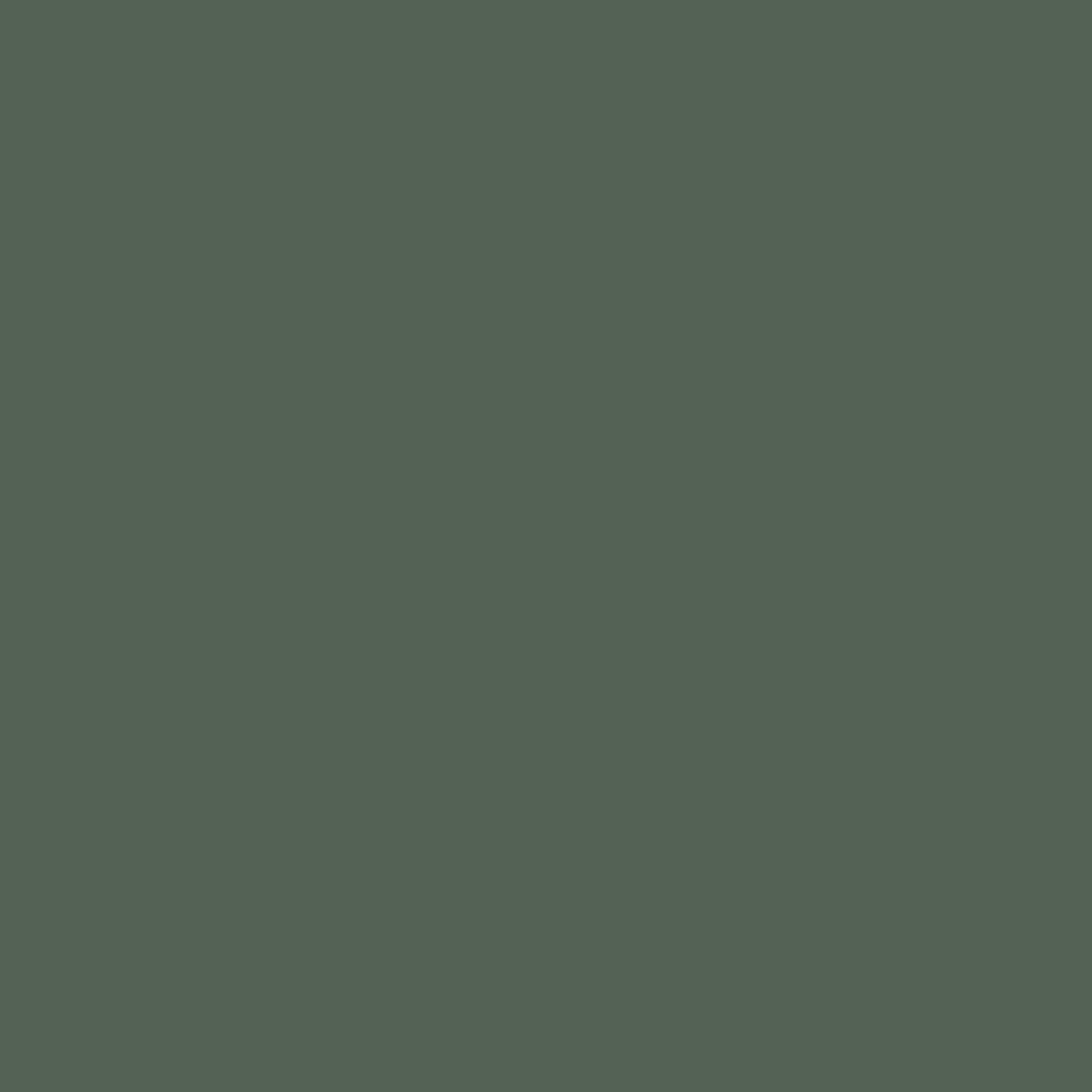 Wood Swatch :: Kale