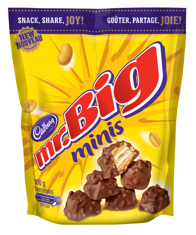 Mr Big Minis Chocolate Pieces 100 G