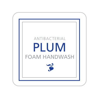 Dispenser Label - Antibacterial Plum Foam Handwash