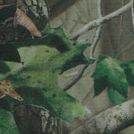 Swatch for Realtree® Camo Duck Tape® Brand Duct Tape - Hardwoods, 1.88 in. x 10 yd.