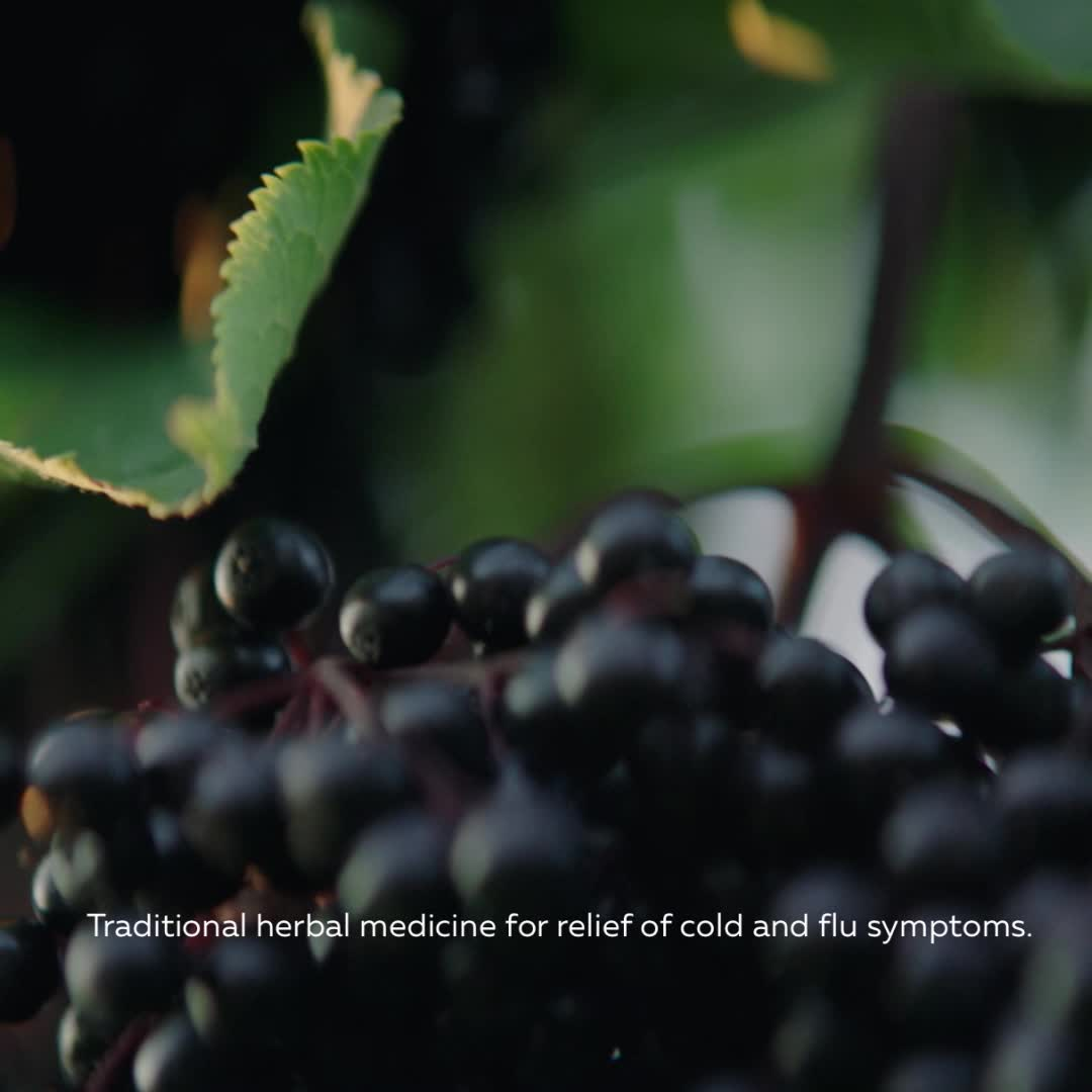 Promotional Video for Organic Sambucus Cold and Flu Care, Syrup / 8 fl oz (240 ml)