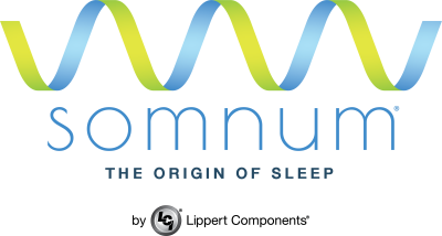 somnum - The Origin of Sleep
