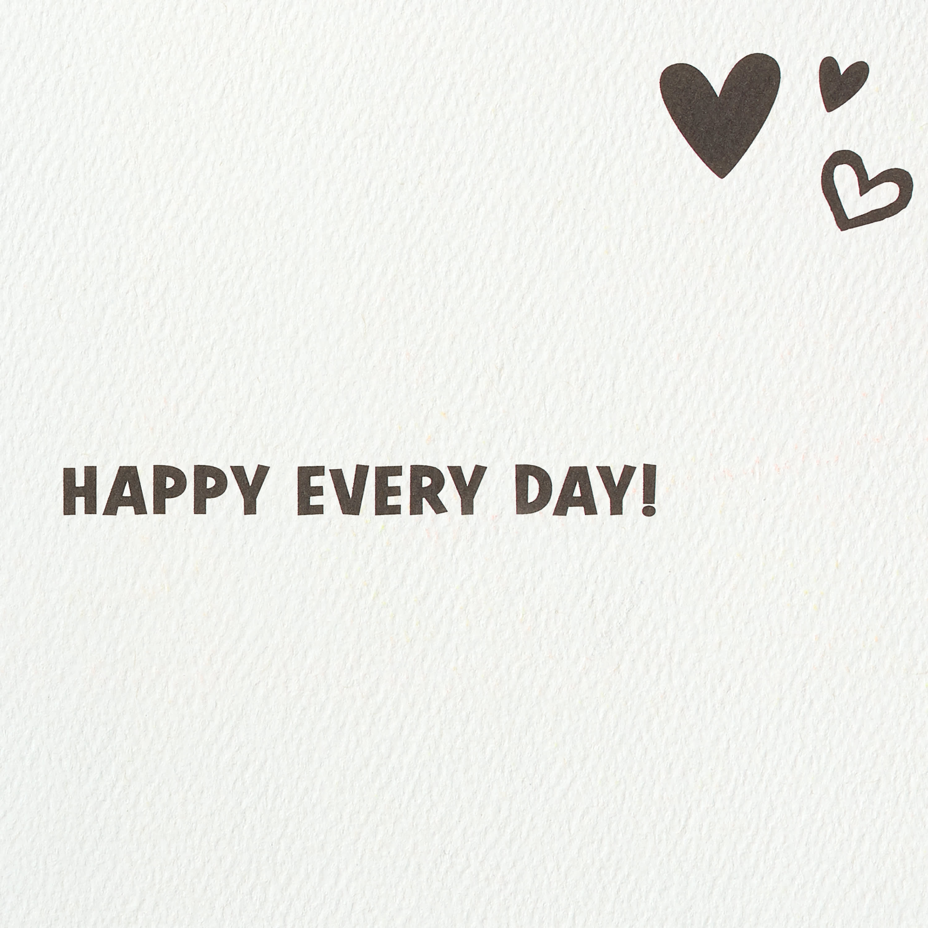 Puppies Valentine's Day Cards, 6-Count image