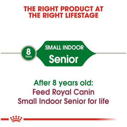 Small Indoor Senior Dry Dog Food