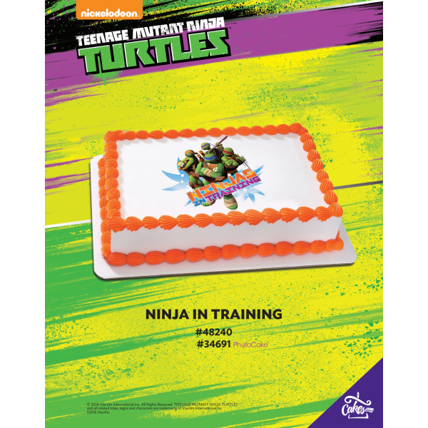 Teenage Mutant Ninja Turtles™ in Training PhotoCake®/Edible Image® The Magic of Cakes® Page