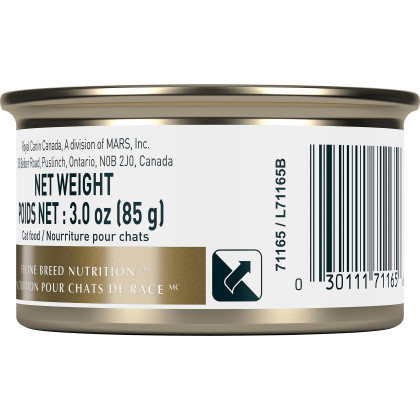 Royal Canin Feline Breed Nutrition Persian Loaf In Sauce Canned Cat Food