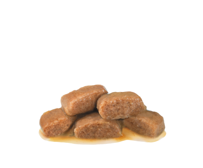 Renal With Fish (in gravy) kibble