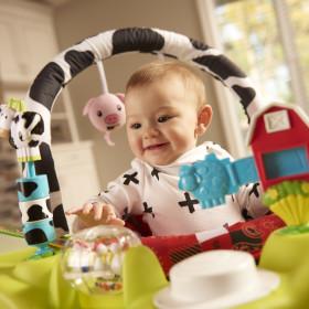 Playful Pastures Bouncing Activity Saucer