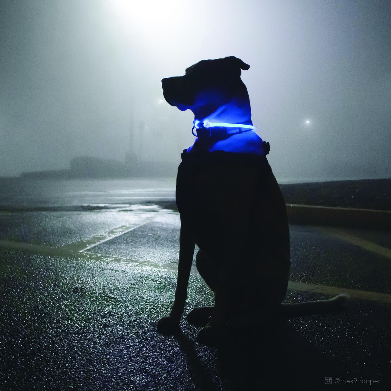 bluelightup.jpg