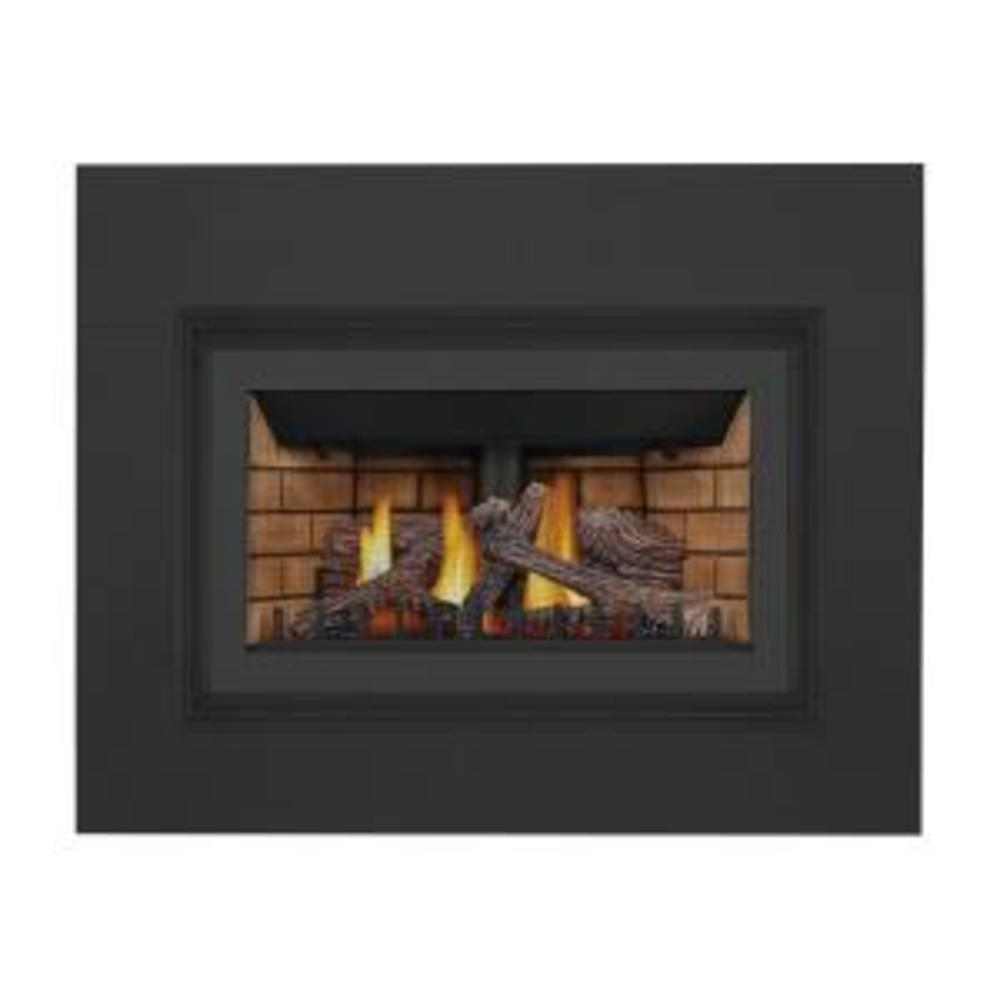 Click to view Inspiration™ ZC Gas Fireplace Insert