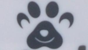 Maslow Design Series Non-Skid Paw Design Dog Bowls