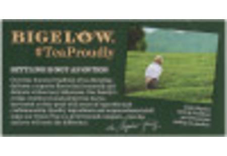 Bigelow Decaffeinated Green Tea bag in foil overwrap
