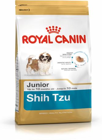Shih Tzu Junior
