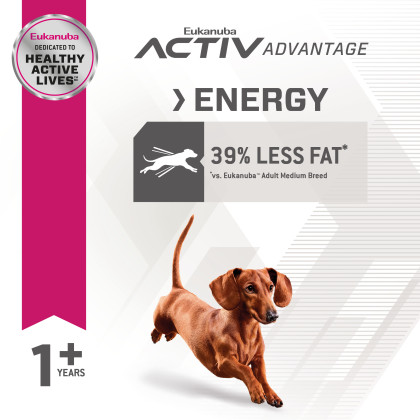 Fit Body Weight Control Small Breed Dry Dog Food