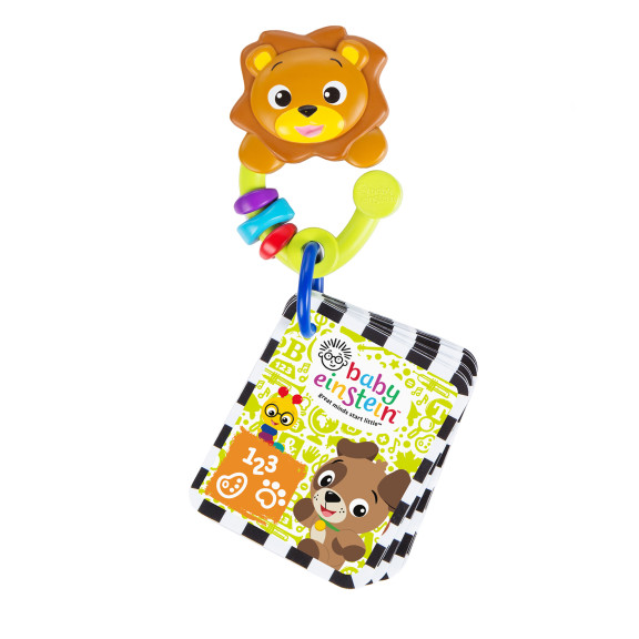 Take Along Discovery Cards™ Activity Toy