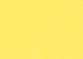 Bainbridge Lemonade 32