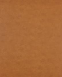 Bainbridge Terracotta 32