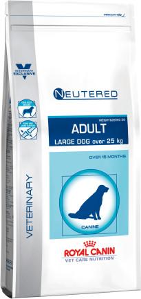 Neutered adult large dog