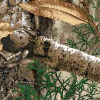 Swatch for Realtree Edge™ Camo Duck Tape® Brand Duct Tape, 1.88 in. x 15 yd.