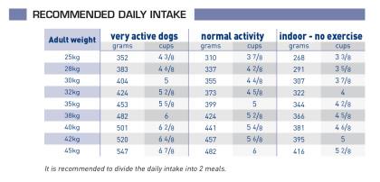 Adult large dog feeding guide