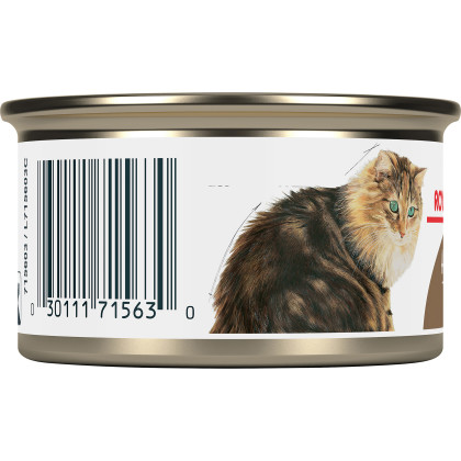 Royal Canin Feline Health Nutrition Aging 12+ Thin Slices In Gravy Canned Cat Food