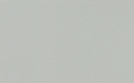 Crescent Dawn Gray 40x60