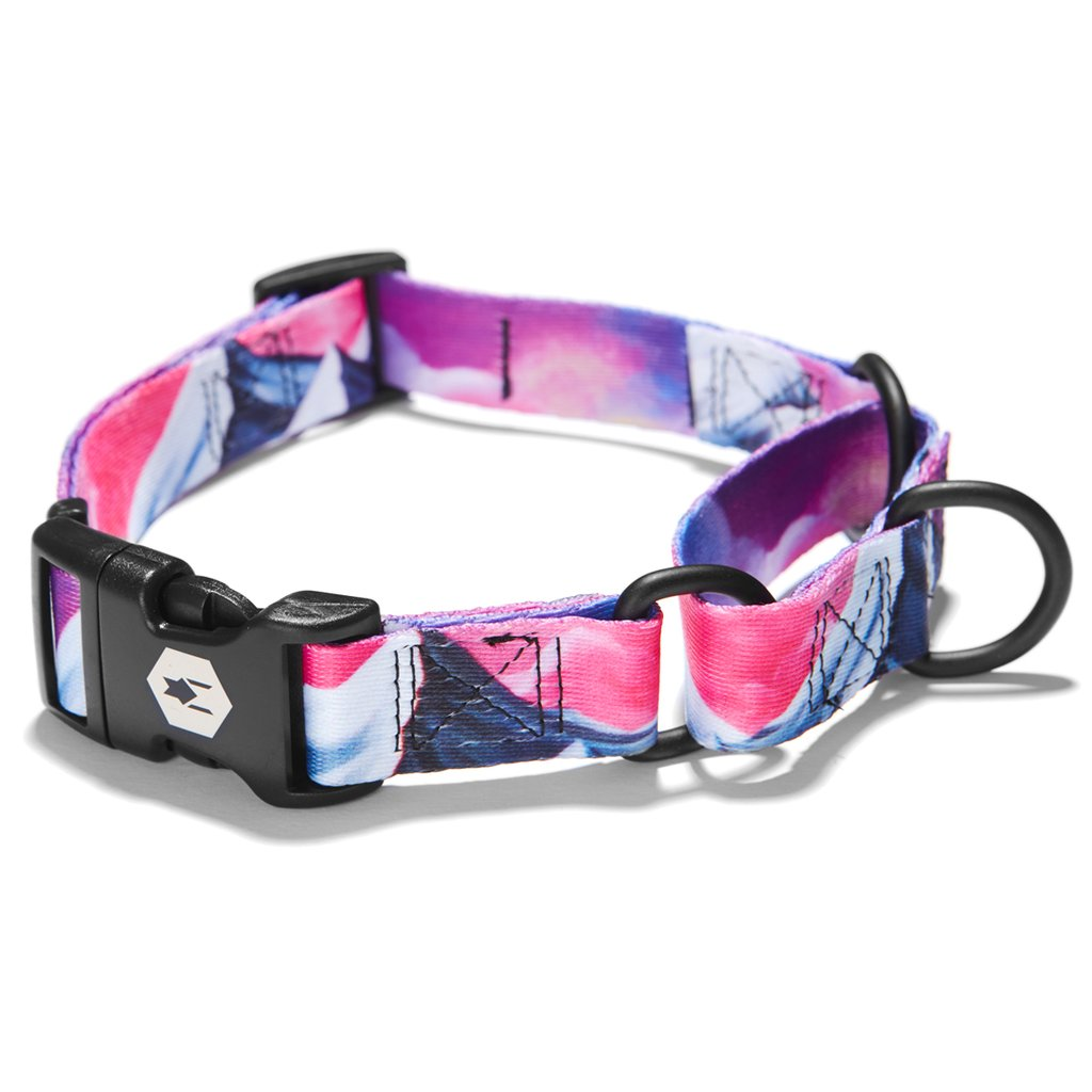 Wolfgang MountainHome Martingale Dog Collar