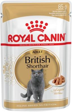 British Shorthair Adult (in gravy)
