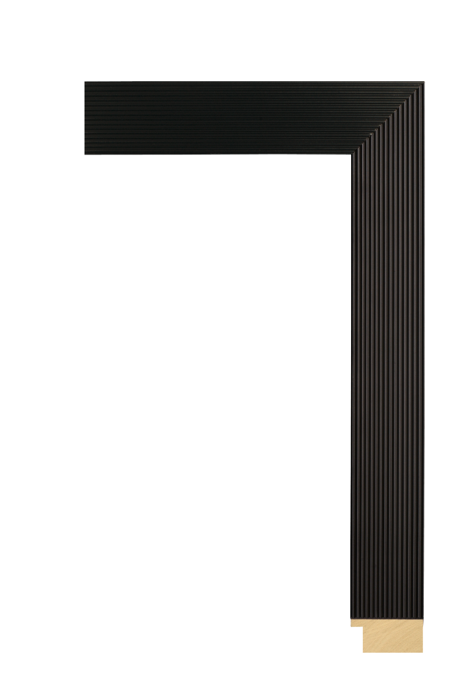 Tribeca Black 1 5/8