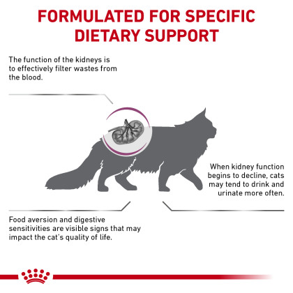 Renal Support F Dry Cat Food (Packaging May Vary)