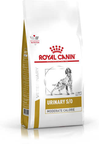 Canine Urinary SO Moderate Calorie