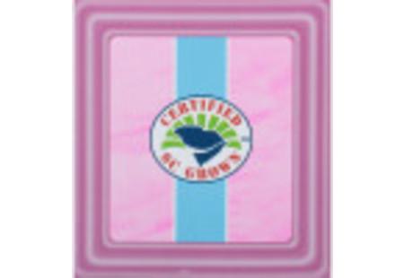 Top of Charleston Tea Rockville Raspberry Tea box
