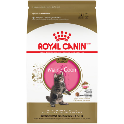 Maine Coon Kitten Dry Cat Food