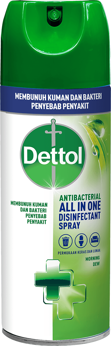 Spray Disinfektan Anti Bakteri Dettol Morning Dew