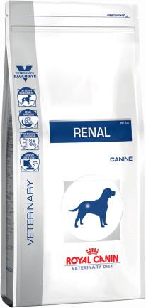 Renal