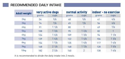 Adult small dog feeding guide