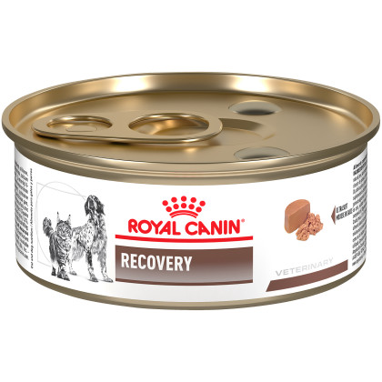 Royal Canin Veterinary Diet Recovery Canned Cat and Dog Food