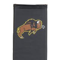 North Dakota State Bison thumbnail 4