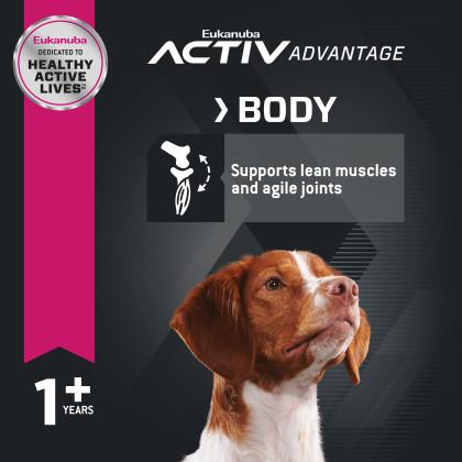 Adult Medium Breed Dry Dog Food