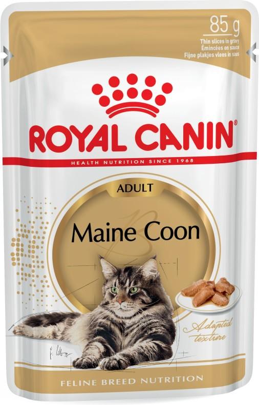 maine coon wet cat food royal canin. Black Bedroom Furniture Sets. Home Design Ideas