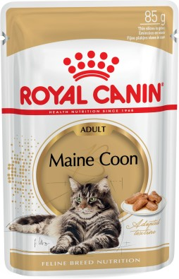 Maine Coon (in gravy)