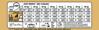 Boxer Adult feeding guide