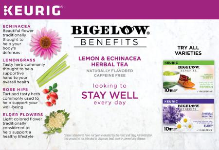 Ingredient panel of Bigelow Benefits Stay Well Lemon and EchinaceaHerbal Tea K-Cups Box for Keurig