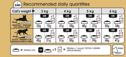 Siamese feeding guide