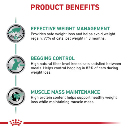 Satiety Support Weight Management Dry Cat Food