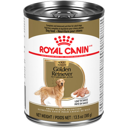 Royal Canin Breed Health Nutrition Golden Retriever Adult Loaf In Sauce Dog Food