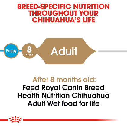 Chihuahua Adult Loaf in Sauce Canned Dog Food