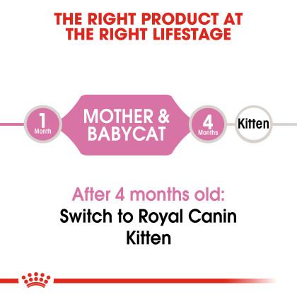 Mother & Babycat Dry Cat Food